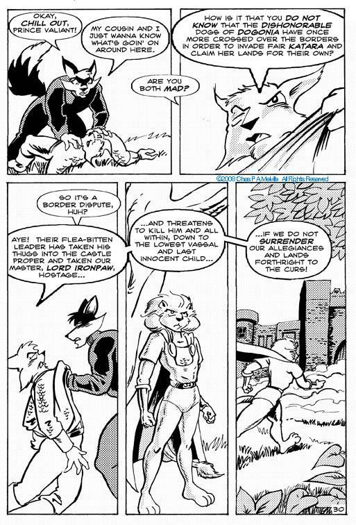 pg 30